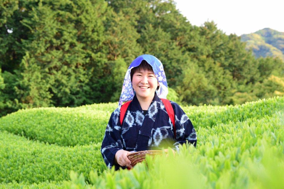 'Tea pickup experience'Image 4